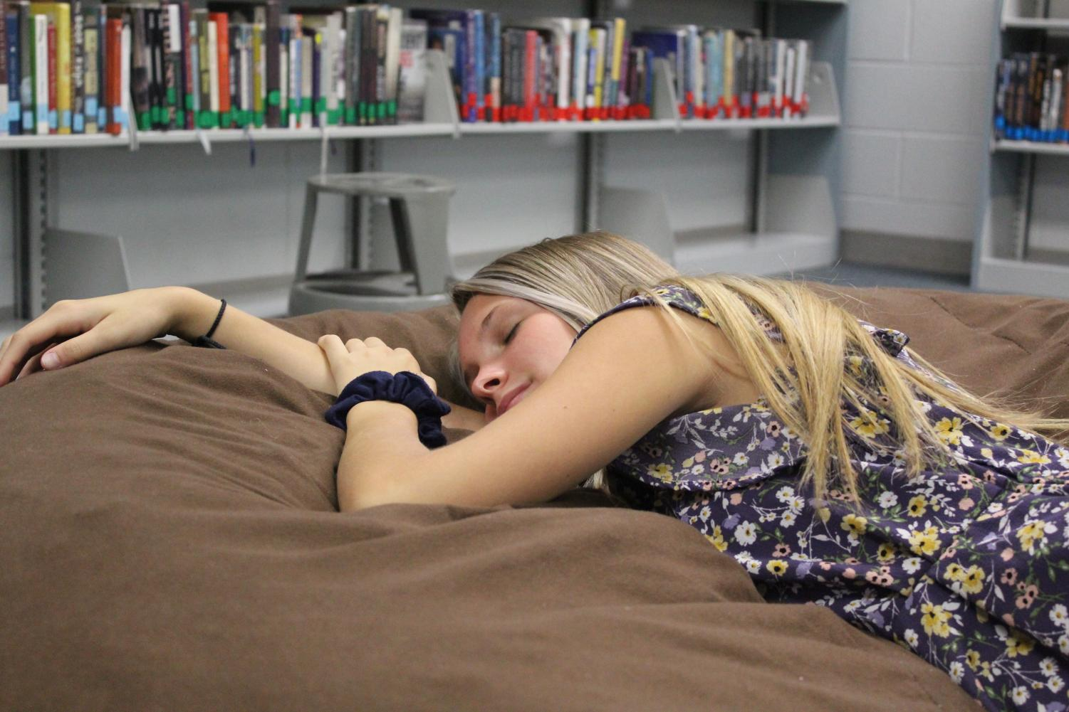 Lindsey Randolph (fake) Napping on Beanbag in Media Center