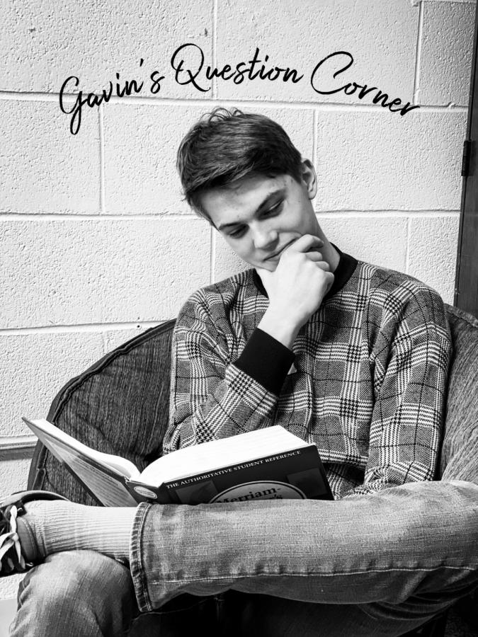 Gavin%27s+Question+Corner
