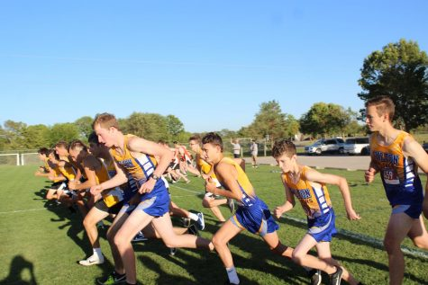 Cross Country Season Wrap-Up